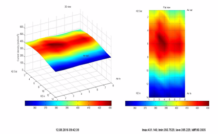 Figure 3: Three-and two-dimensional evaluation of current density measurement data